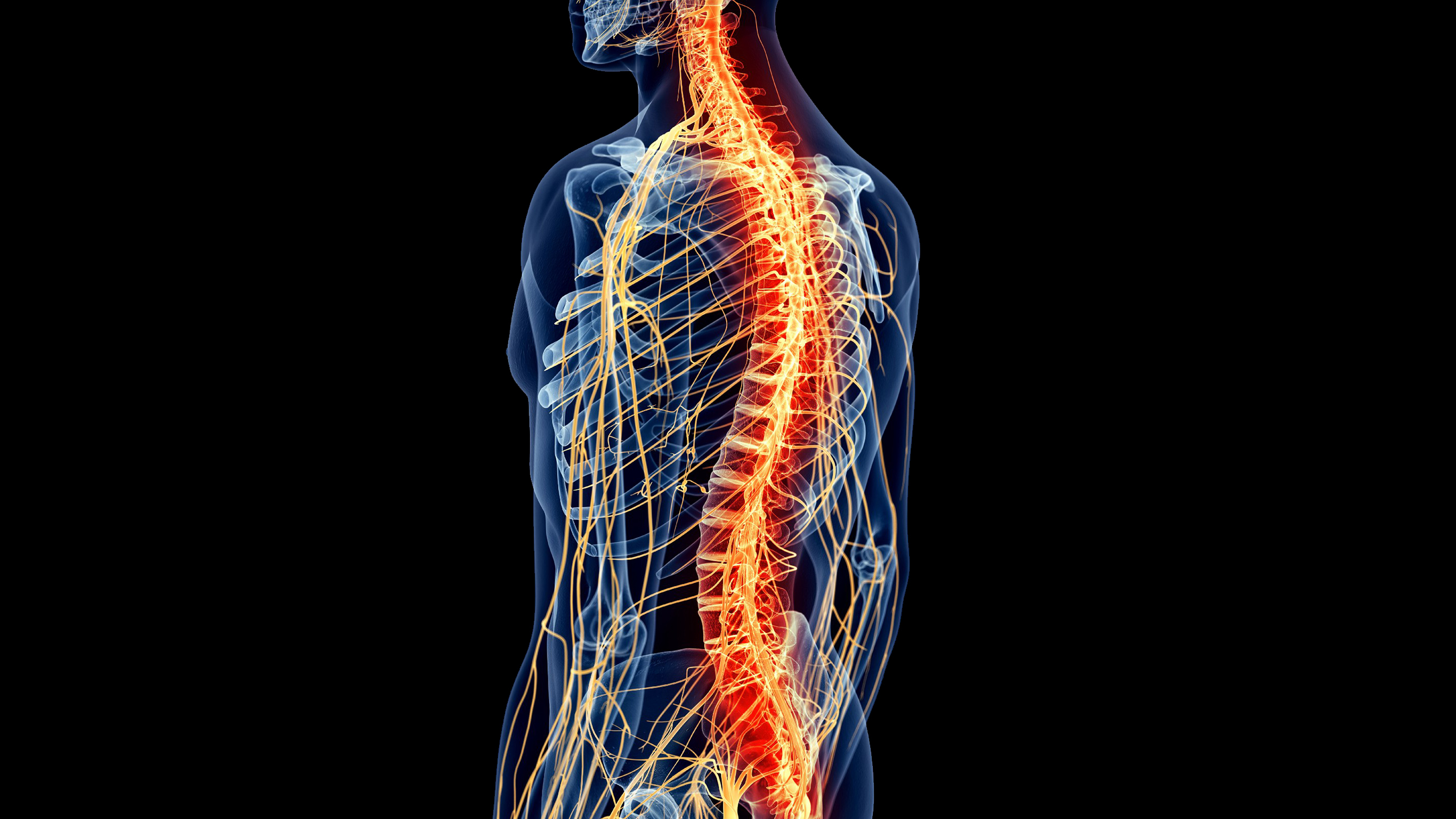 Difference Between a Complete Spinal Cord Injury and Incomplete Spinal Cord Injury