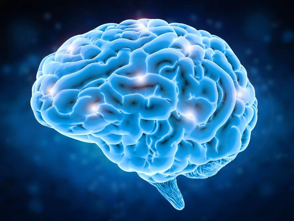 bigstock-Brain-Power-Concept-173922535-1-1024x768-1